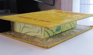 Repurposed Book